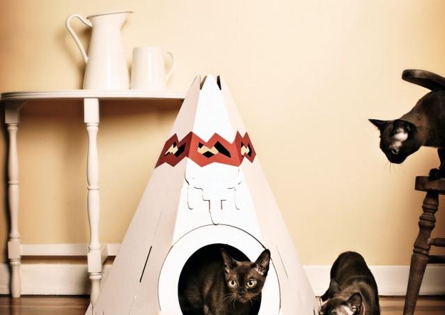 Che Teepee questi gatti!