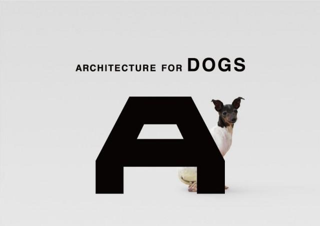 Architetti, a cuccia!