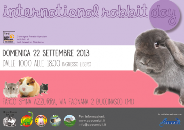 INTERNATIONAL RABBIT DAY con AAE!!!