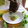 SUPER FOOD per conigli