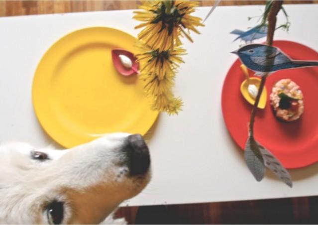 Una Pasqua da cani? Oh, sì sì!