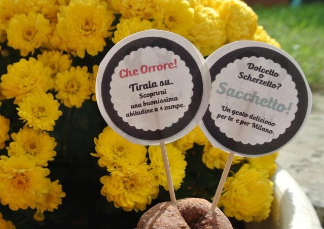 HALLOWEEN CAKKE, l'educazione civica a 4 zampe… ora è più dolce!