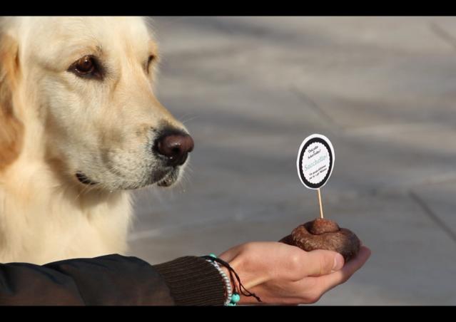 DOLCETTO O SCHERZETTO? SACCHETTO! La dog guerrilla di Kiki Pelosi per Milano.