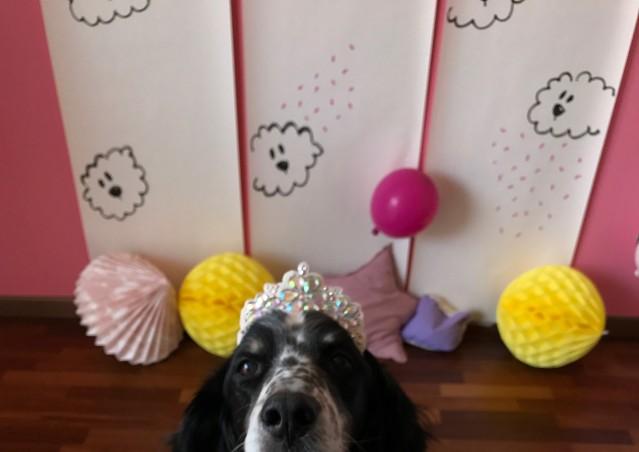 Buon Compleanno Montagna Bianca!
