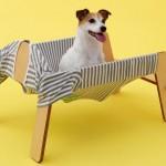 wanmock for jackrussel terrier by Torafu