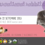RabbitDay2013_A4_300dpi