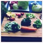 i vegetali